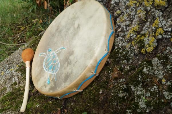 tambour tortue